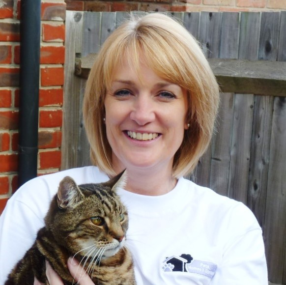 pet sitting and day care petworth